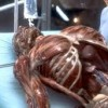 Hollow Man (2000)  – Trailer Stills & Info