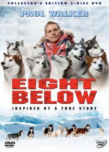 65_d_84161_0_EightBelow